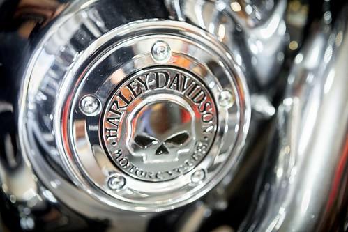 Harley Davidson Motorcycle Skull Detail