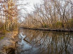 Mattawoman Creek