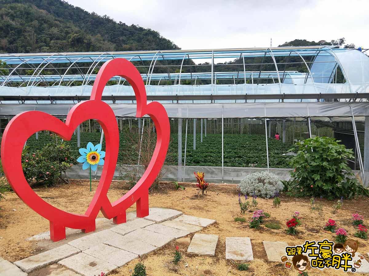 苗栗縣大湖灣潭玫瑰草莓園-39