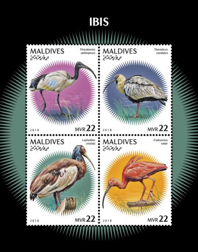 Maldives - Birds: Ibis (January 4, 2019) miniature sheet of 4