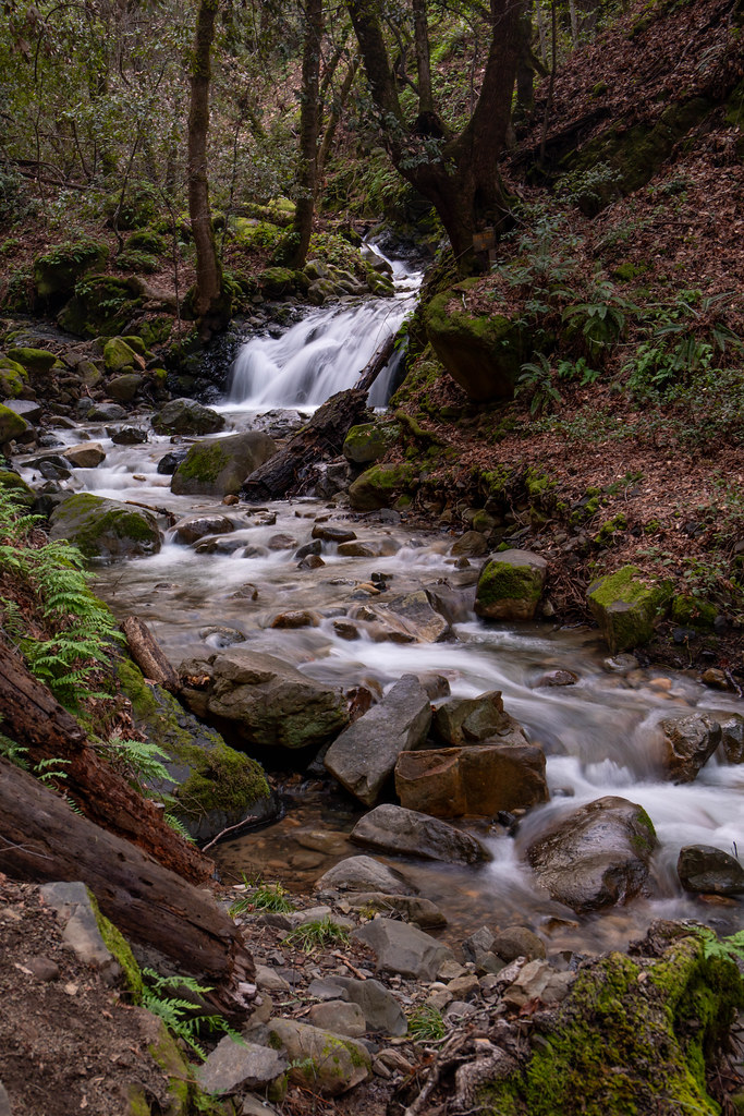 02.23. Uvas Canyon Falls