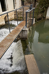 Weir on Le Serein, Chablis