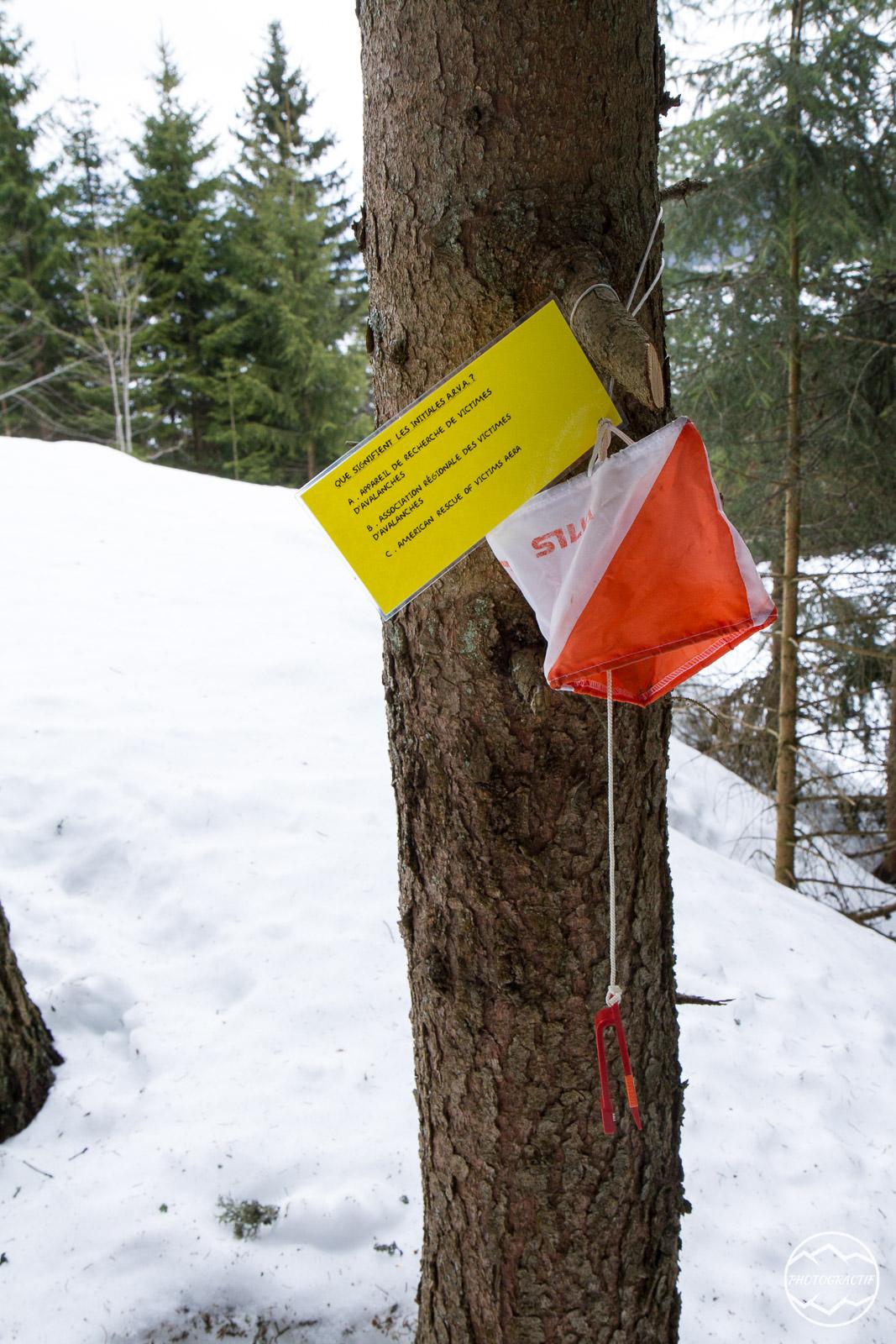 DSN Entrainement Ski Raquettes (79)