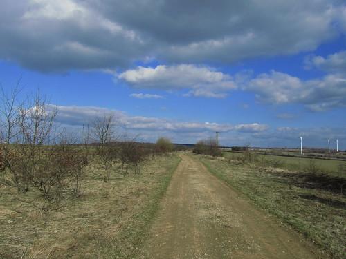 20110320 0207 293 Jakobus Weg Bäume Feld Weite Wolken Windräder
