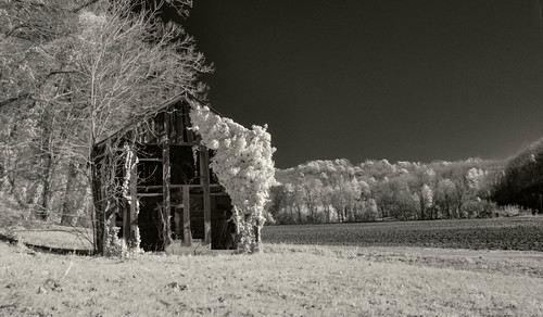 The Barn - Infrared