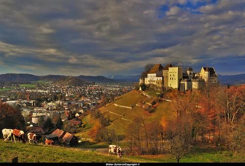 Château de Lenzbourg (16)
