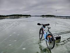 From Todays Mtb Ride Mälaren Sweden