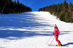 Tipy SNOW tour: Harrachov – na Rejžák na koleno