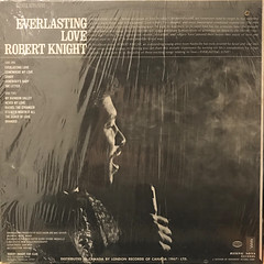 ROBERT KNIGHT:EVERLASTING LOVE(JACKET B)