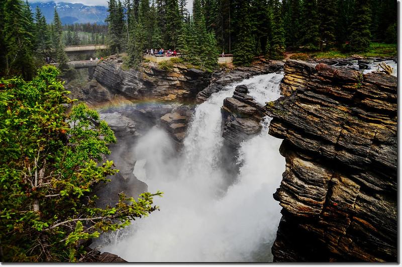 Athabasca Falls  (8)
