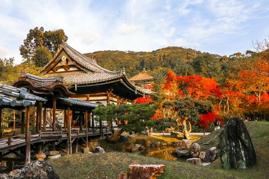 kyoto-temples-alexisjetsets-2