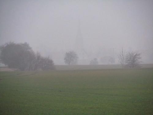 20110316 0203 348 Jakobus Feld Bäume Nebel_K