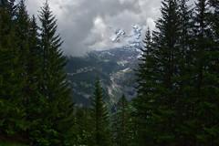 Alps, 1650 m. Murren, Switzerland