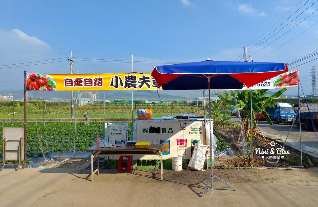 小農夫草莓園05