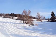 Aktuálně: hory zalité sluncem, sněhu dostatek