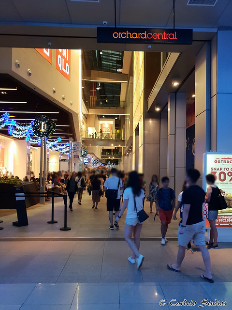 Orchard Central 05