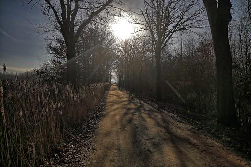 20190213 002 Koningslust wandeling Vlakbroek