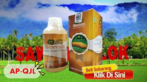 Apotik Yang Jual QnC Jelly Gamat di Kota Solok