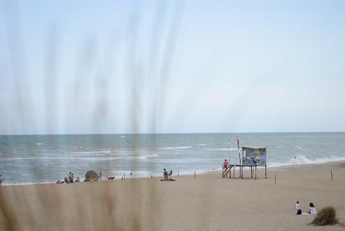 Mar del Sud