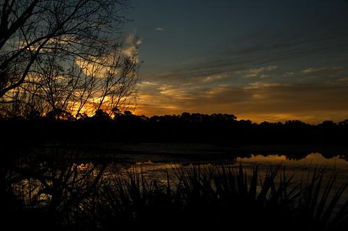 sunrise canon sun sigma 18250mmf3563dcos florida usa us 18250mm olliespond olliespondpark clouds water reflections reflection