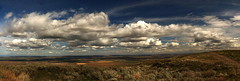 Hanford Reach National Monument, Wahluke Unite (East) aka Saddle Mountain WLR