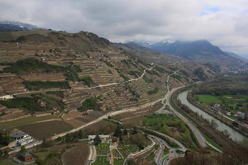 🇨🇭 Wine terraces / Тераси с лозя