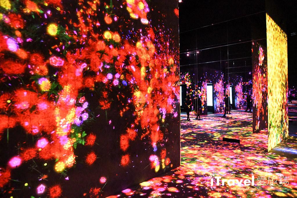东京艺术展览 teamLab Borderless (28)