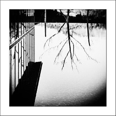 Au pays des Ombres / In the Land of Shadows #10