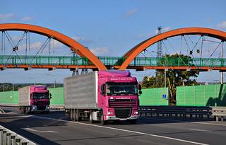 "DAF trucks. M-3 ""Ukraine' federal road, Maloyaroslavetsky district, Kaluga iblast, Russia."