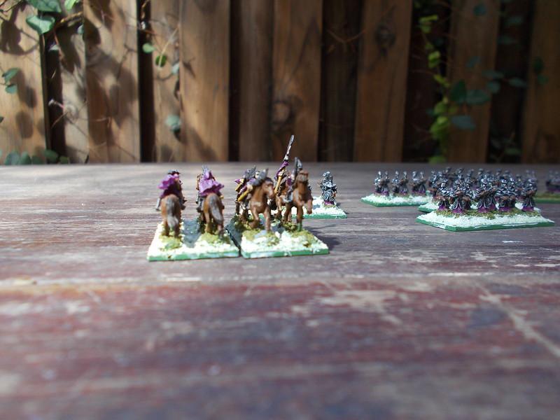 [Armée] Mes Elfes-Noirs - Page 3 47362011622_9f2176f4b1_c