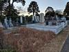 Photo:Aoyama Cemetery, Tokyo (東京) By dbaron