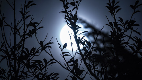 2019 Spring Equinox Super Worm Moon