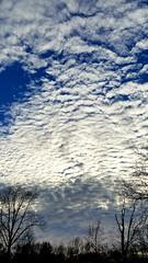 2019-01-06 Sky View