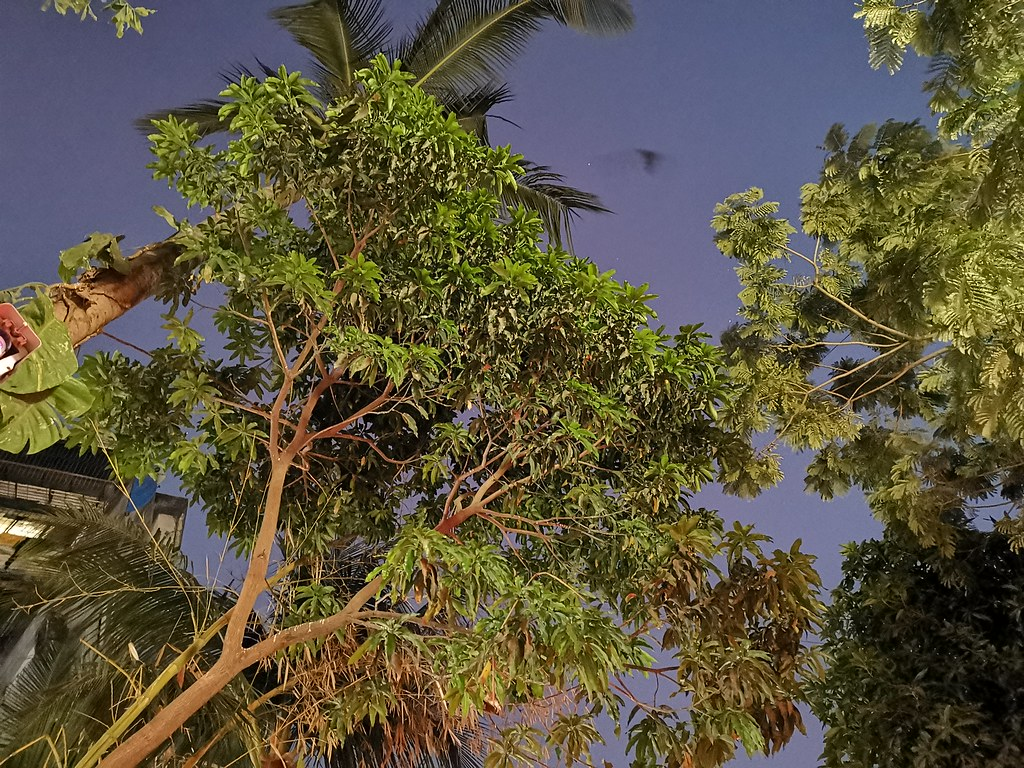Huawei Mate 20 Pro low light camera samples