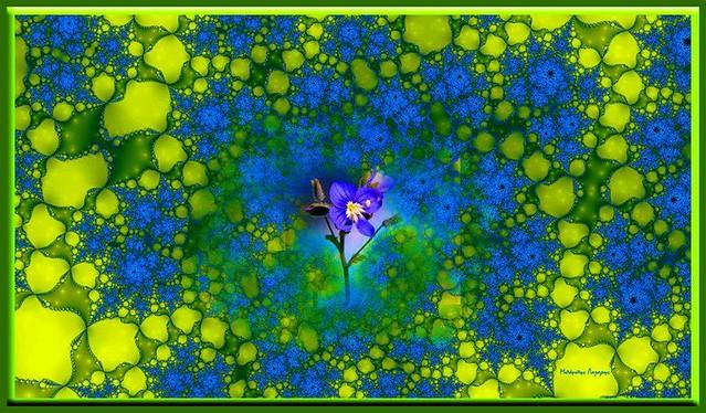 Φράκταλ συνθέσεις του Μπάμπη Λάζαρη εμπνευσμένες από τη Φύση