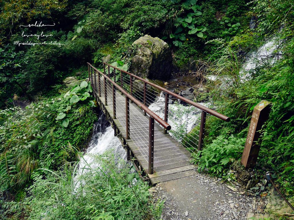宜蘭冬山鄉爬山郊遊景點推薦新寮瀑布步道 (1)