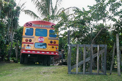 abandoned bus. 버려진 버스