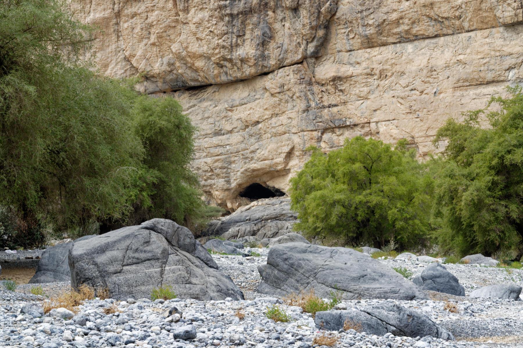 Wadi Tanulf Scene