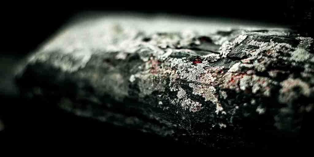 La vie aurait commencé à bouger il y a 2,1 milliards d'années