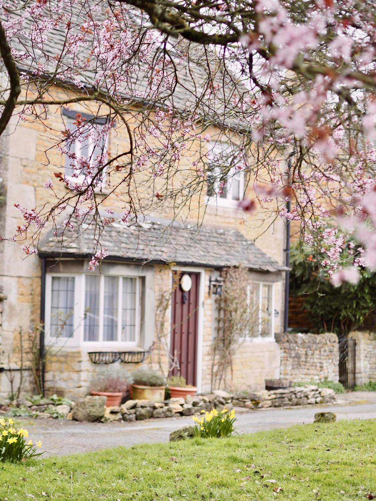 bourton on the water blossom cherry trees