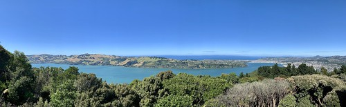 Otago Peninsula from Signal Hill