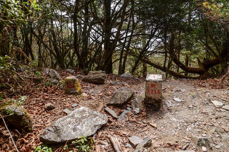 戒茂斯山#7215三等三角點暨山字森林三角點(Elev. 2504 m) 1