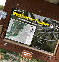Weekiwachee Preserve