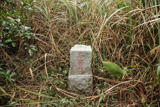 四林山三等三角點(#934)