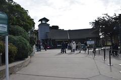 San Francisco Zoo February 23, 2019