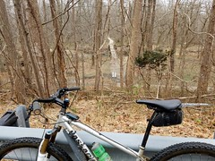 2019 Bike 180: Day 26 - Through the Woods