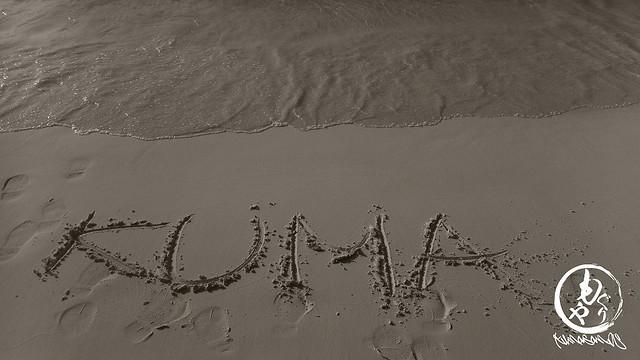 パウダーの浜辺♪♪