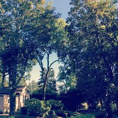 Summer - Photo of Bellefontaine