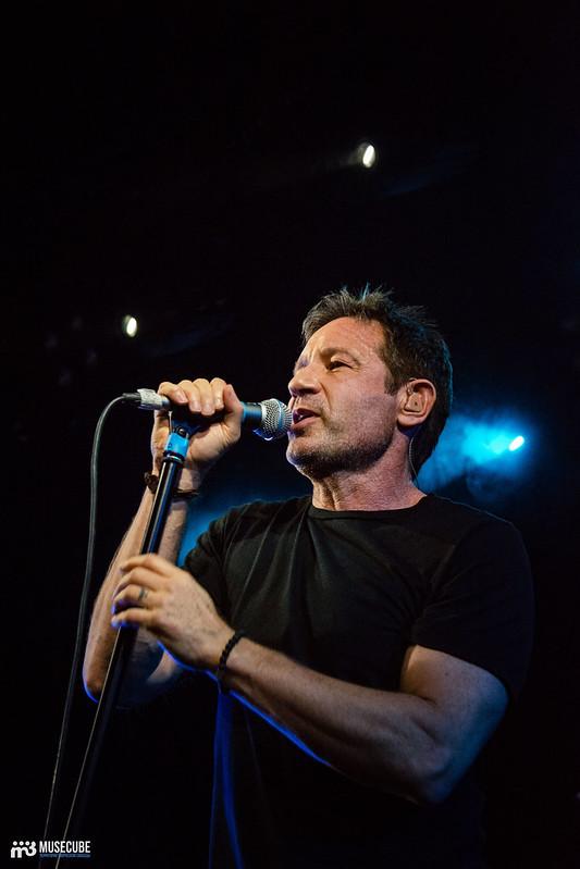 David Duchovny (41)
