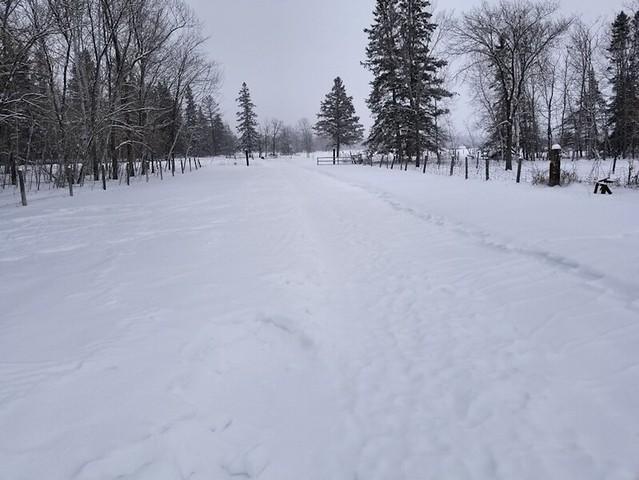 20190213.driveway